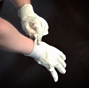 Professional Protective Canvas Gloves Image 1
